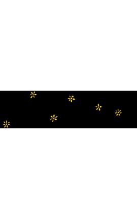 Formation en extension de cil
